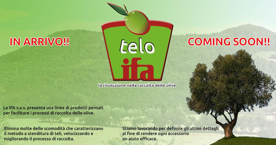 telo ifa raccolta olive